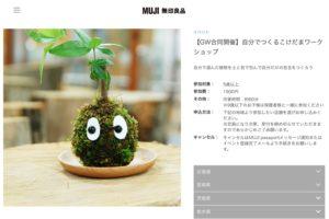 関東近郊で田植え体験ができるところ8選