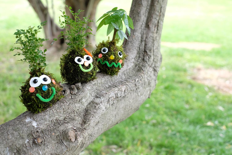 デコって楽しい!秋のオリジナルこけだま作り@夢の島熱帯植物館(9/9)
