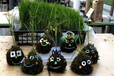 都会だからこそ楽しめる稲作体験!「こけ田んぼ」@アークヒルズ