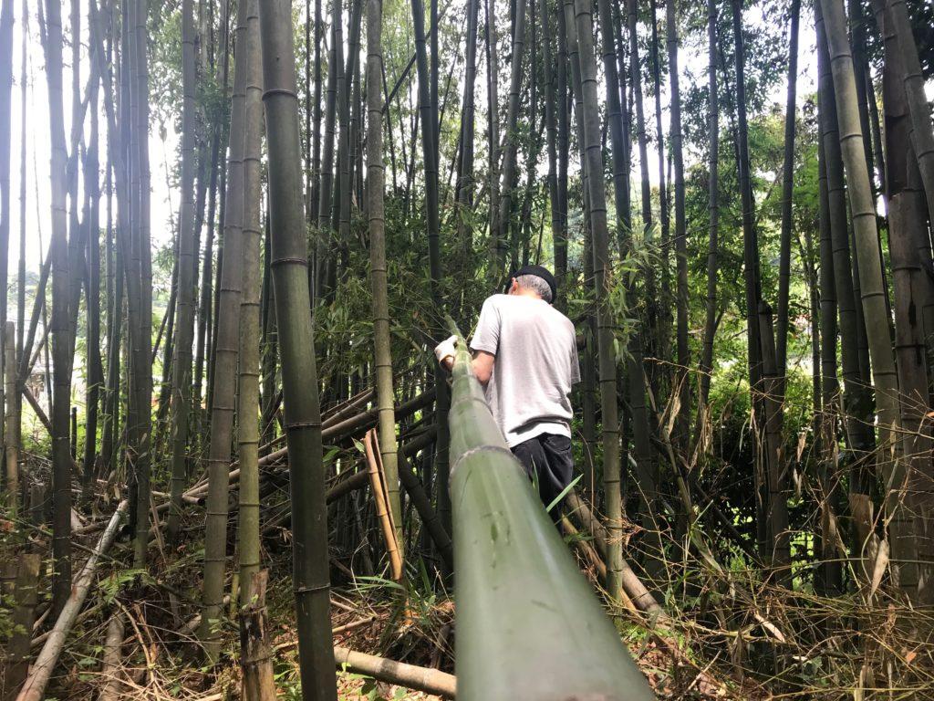 4eb4610864 ... 編み込んで作る竹細工は、使い手やその人にあった形に仕上げることができます。また、長年使いこんでいくと、ゆっくりゆっくり色が変わっていくのも、 楽しみです。