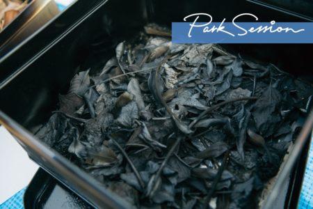 秋の記念品を炭化して楽しむ、花炭づくり。|クラフトSession