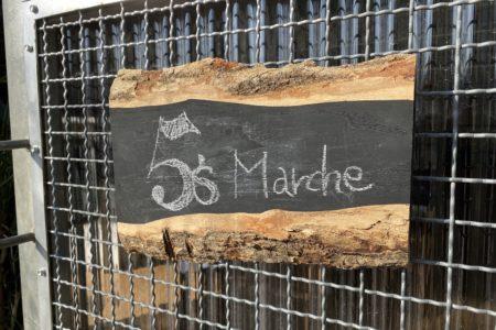 """お庭の桜と共に、5's マルシェを楽しむ。""""さくらとひろしま2021""""@五日市・ミナガルテン(3/25)"""